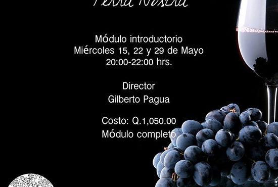 Academia del Vino Terra Nostra
